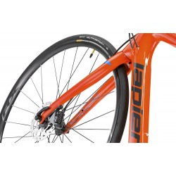 Focus Raven Ltd 29er