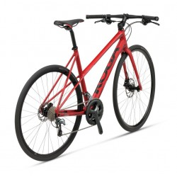 Gazelle Chamonix C7+ Ltd heren